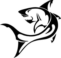logo requin gratuit